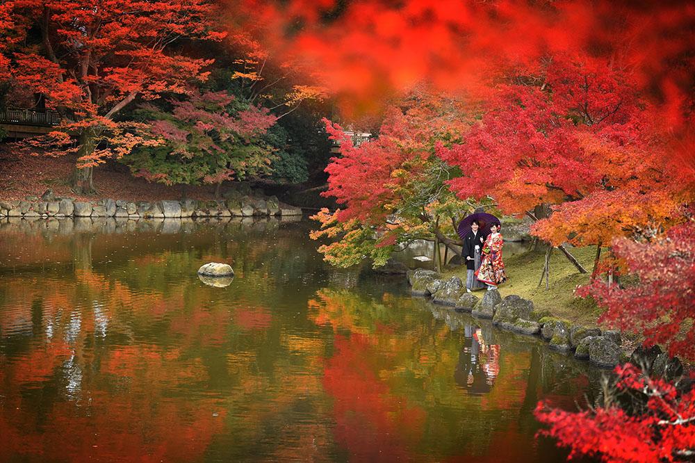 奈良公園 前撮り ロケーションフォト