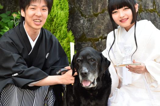 愛犬と一緒 ウェディングフォト 結婚写真