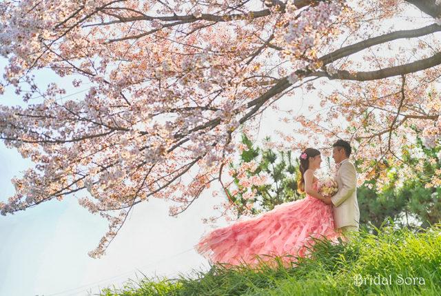 奈良 ドレス 前撮り
