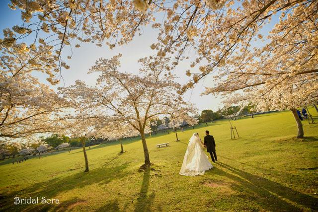 奈良公園 ウェディングドレス 前撮り