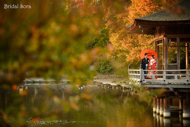 奈良公園 浮見堂 前撮り