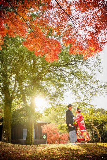 奈良 紅葉 前撮り