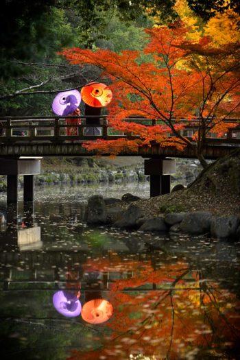 奈良 浮見堂 前撮り
