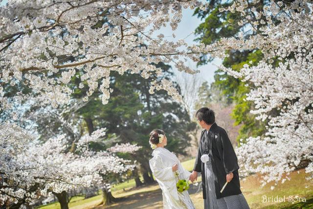奈良公園 前撮り ロケフォト