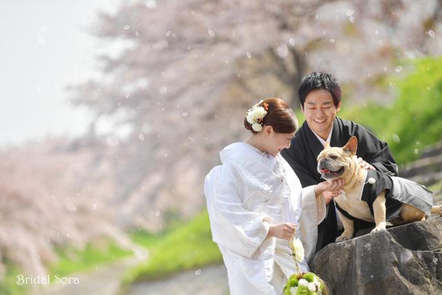 奈良 犬と一緒 ロケフォト