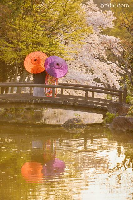 ソメイヨシノ 奈良公園 前撮り