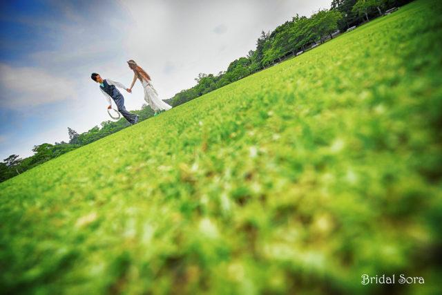 奈良公園 新緑 ロケーションフォト