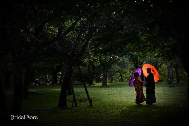 奈良公園 前撮り ロケ撮影