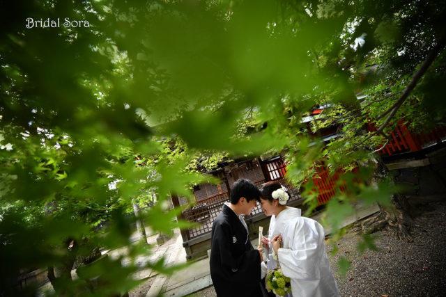 奈良公園 前撮り 五月