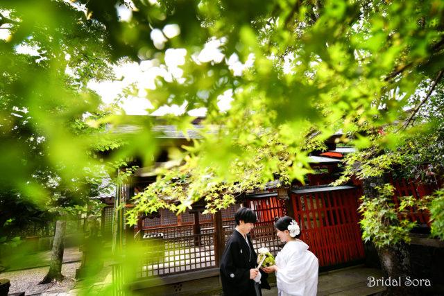 奈良 神宮 大社 ロケフォト