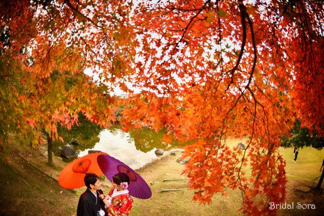 奈良公園 紅葉 前撮り
