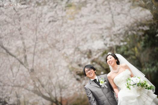 奈良 ドレス 桜前撮り
