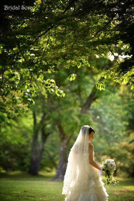 奈良 ウェディングドレス 前撮り