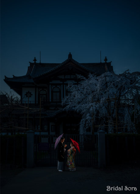 奈良 しだれ桜 ロケーションフォト