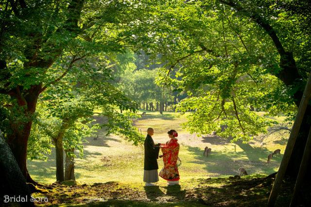 奈良 和装 5月