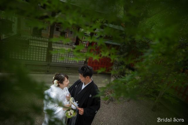 奈良 前撮り 七月